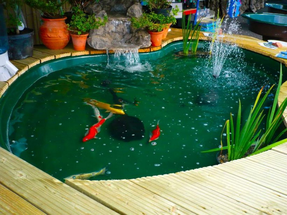 Adding Water Pump In The Fish Pond